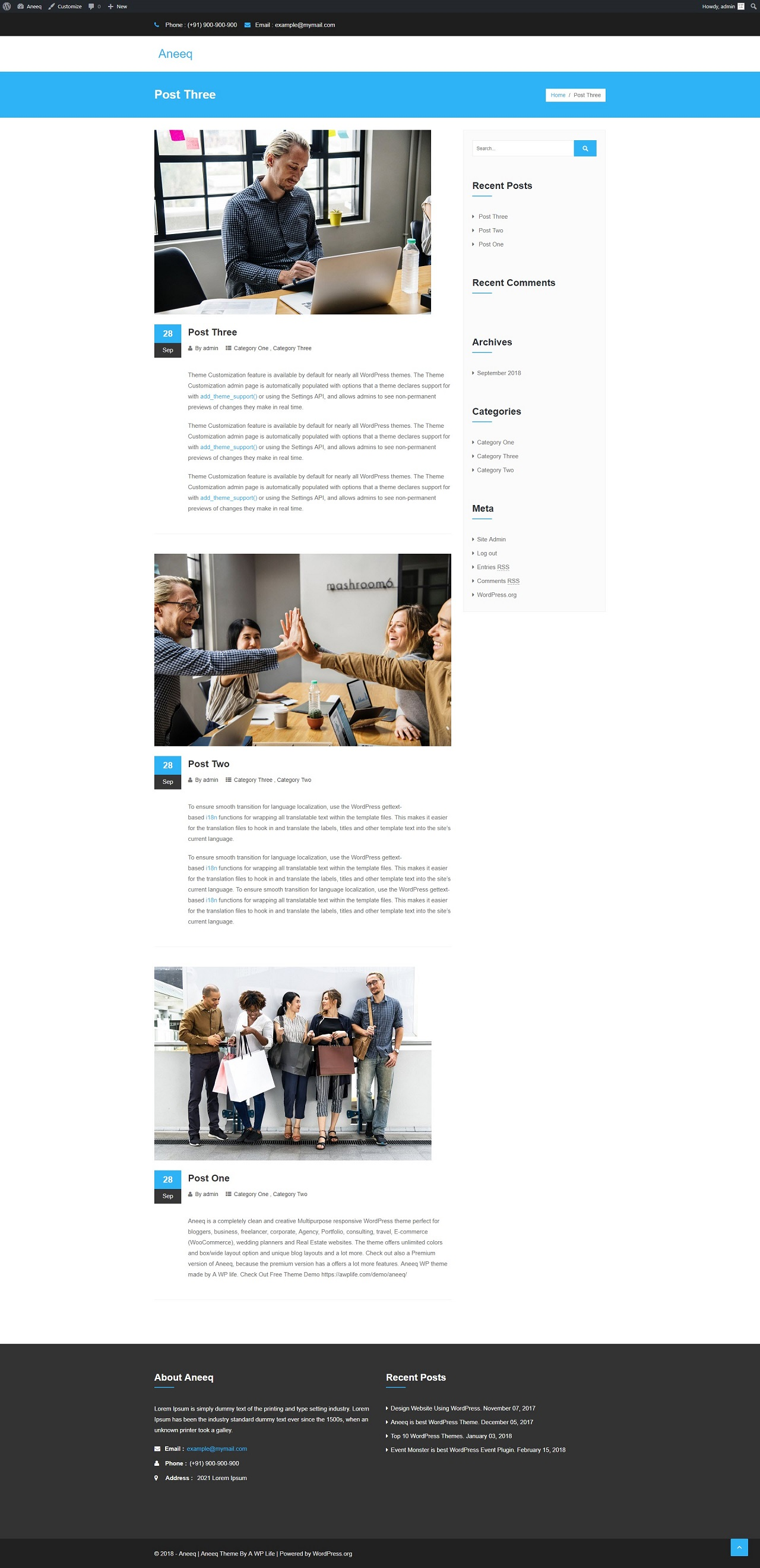 aneeq-wordpress-theme-visit-site