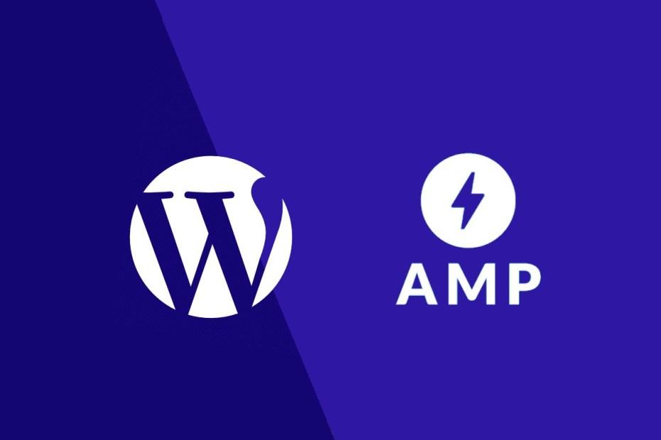 update amp cache