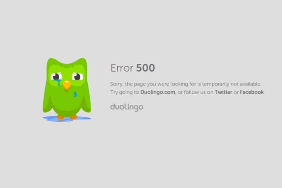 duolingo error something went wrong
