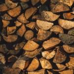 Best Splitting Axe for Chopping Wood in 2017