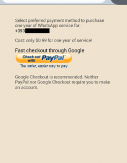 WhatsApp paypal PayPal Whatsapp WhatsApp payment method How to Pay WhatsApp PayPal