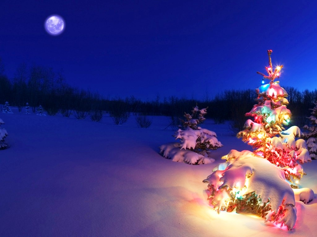 3D-Christmas-Desktop-Backgrounds-Christmas-Trees