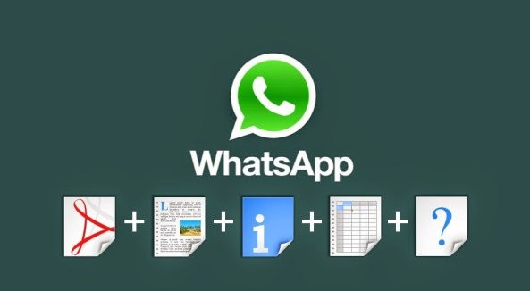 share-pdf-exe-zip-apk-with-whatsapp