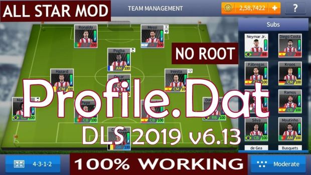 File4Net original Profile dat DLS 2019 v613
