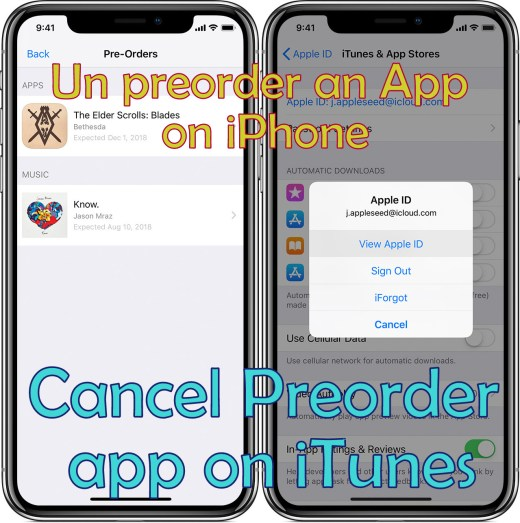 un preorder an appon iphone 2019