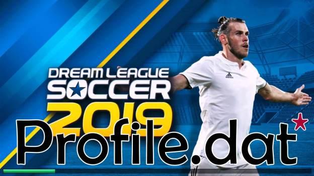Profile.dat for DLS 2019 v6.13