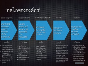 EA_Thai_1.005