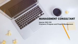 Interim CEO CIO Freelance Program Project Management 1
