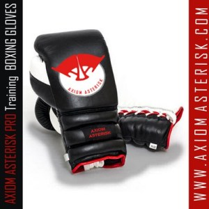 BOXING GLOVES[PRO-TRAIN]
