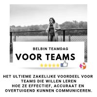 Belbin voor teams