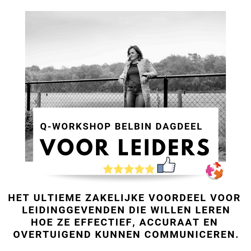 <thrive_headline click tho-post-29887 tho-test-6>Q-Workshop Belbin dagdeel</thrive_headline>