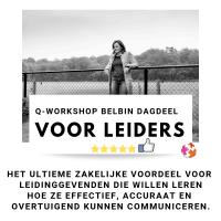 Q workshop Belbin