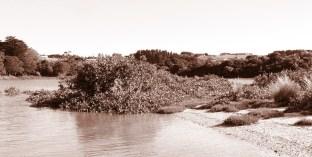 coastal - sepia
