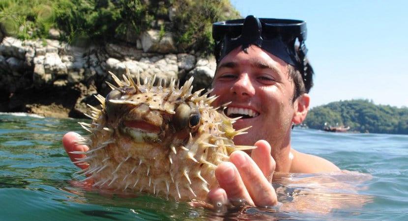 Tortuga Island Costa Rica Tour Jaco Costa Rica