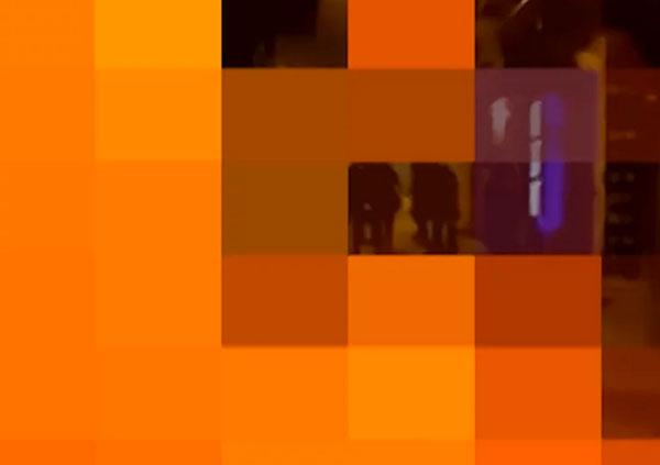 20-CODES-OF...-SENSES-II-de-codes-logos--Rrose-Present