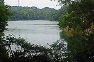 57番~58番札所に向かう途中の犬塚池。