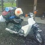2008バージョン、旅カブ。