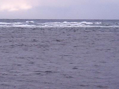 どんよりした宗谷の海。