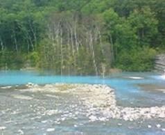 青池近くの川。
