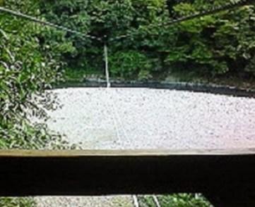 2009/09/07 16:28 野猿に乗りつつ対岸をパチリ