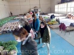 Consejo escolar entrega alimentos 14 7 2020 6 [800x600]