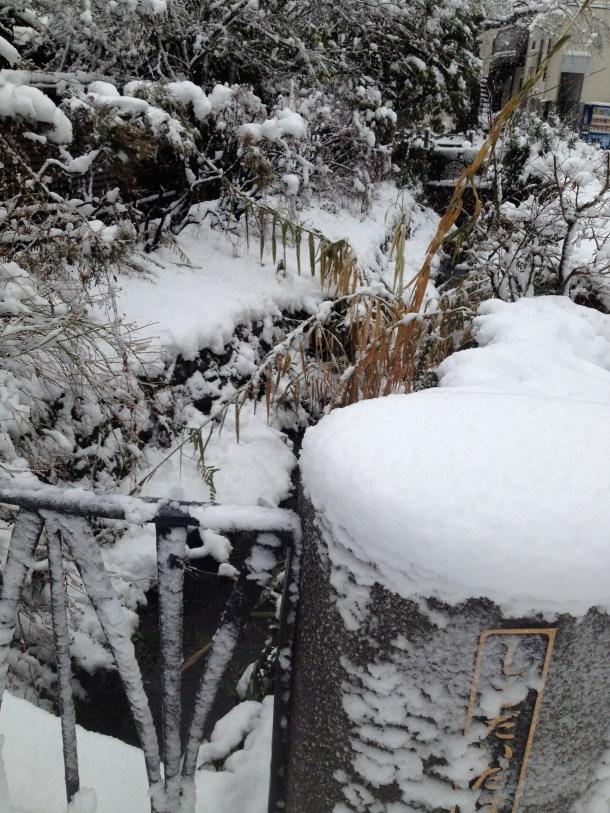 雪国だ^^