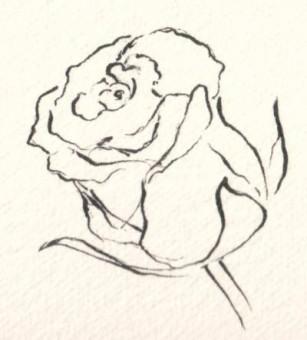 rose-307x340