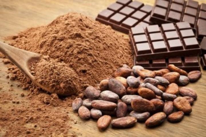 cacao-non-sucre_resize_diapo_w (1)