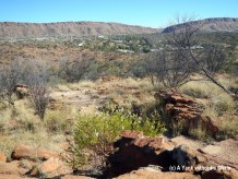 The view of Alice Springs from Meyers Hill