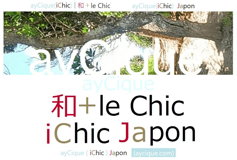 ayCique iChic Japon about