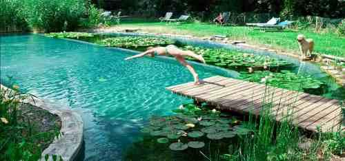 natural-piscina-ecologica-aydoagua