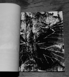 Hand of Stabs-Black-Veined White-Night Edition-inner page 4-A Year In The Country