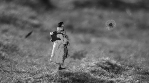 Bye Bye Dandelion-Isabel Garrett-short film-2