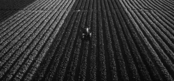 Farm image-2