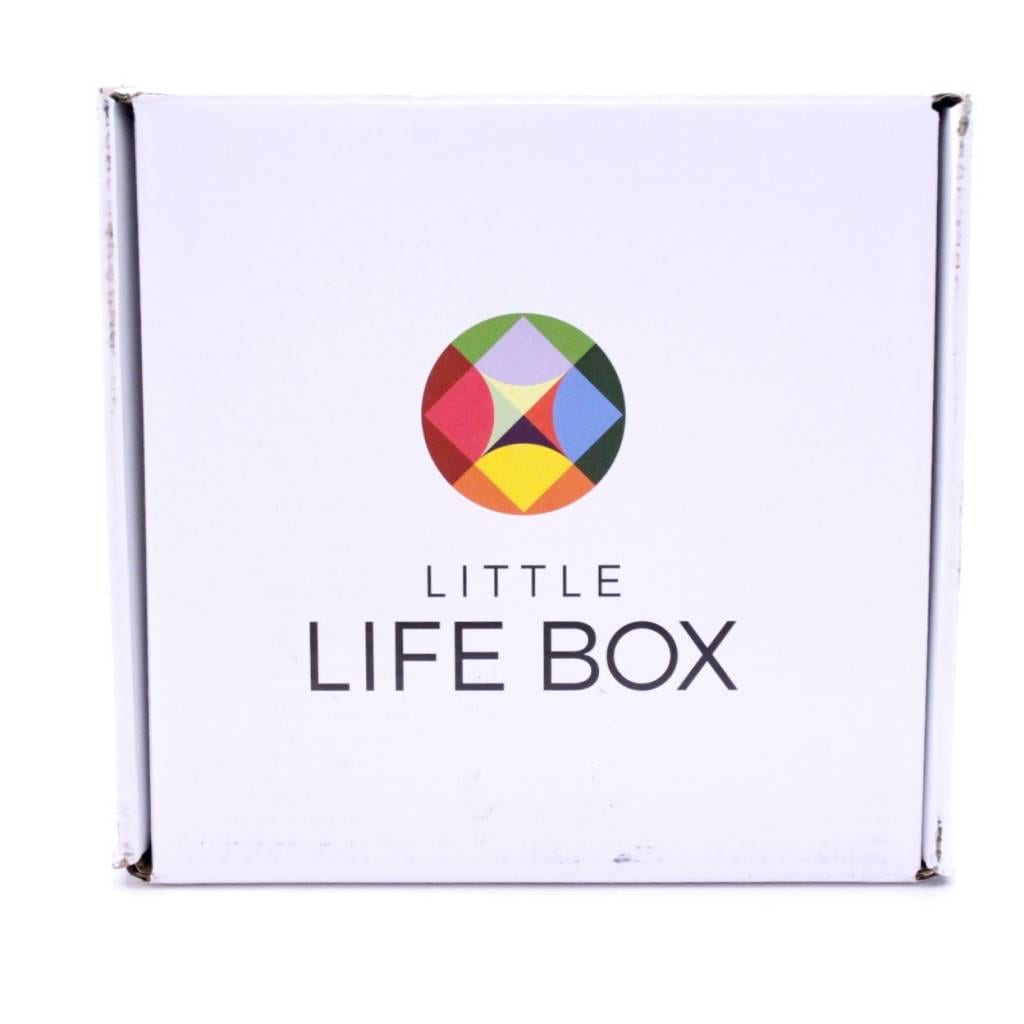 Little Life Box January 2016 3
