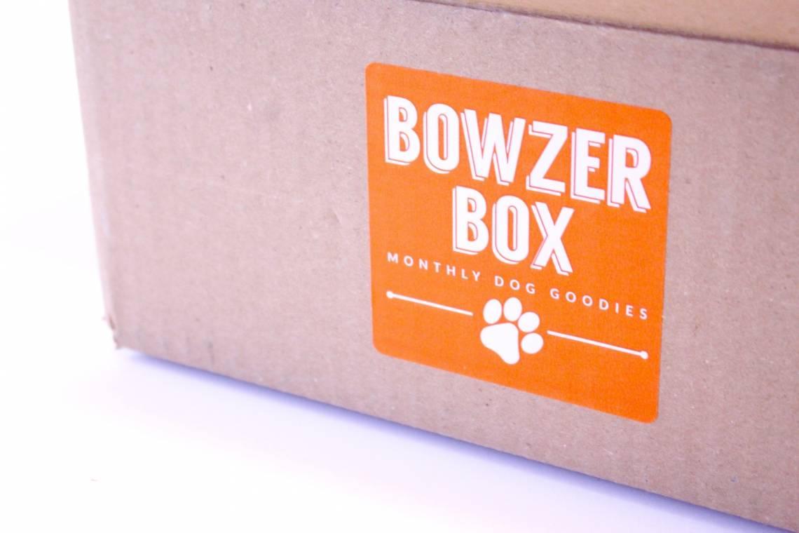 Bowzer Box January 2016 10