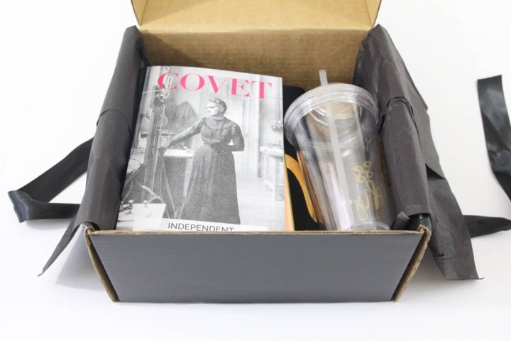 Covet Crate Review July 2016 3