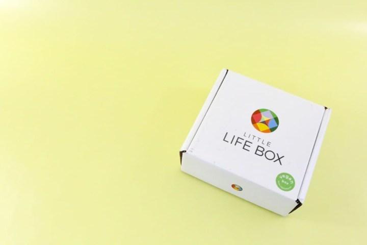 little-life-box-review-november-2016-1