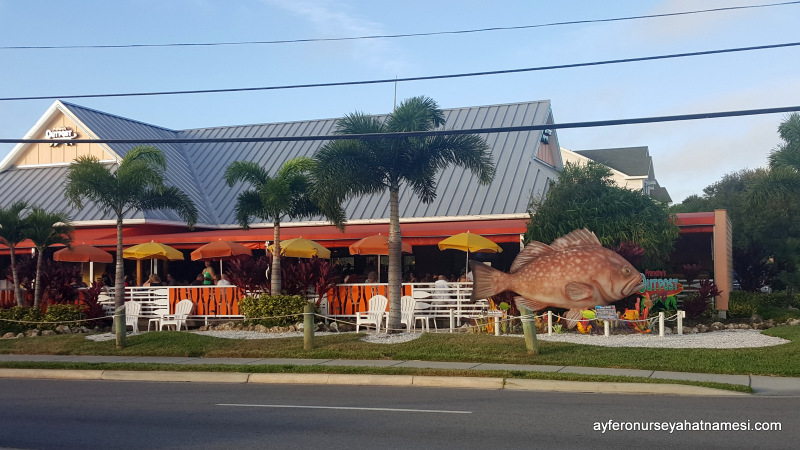 Pam Harbor'daki renkli balı restoranlarından biri...