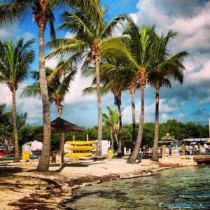 KOA Kamp Alanından - Sugarloaf, Key West Yolunda...