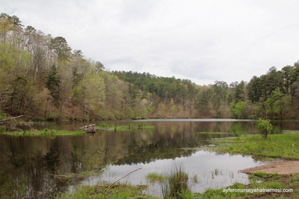 Lake Chinnabee Recratian Area - Alabama State Parks
