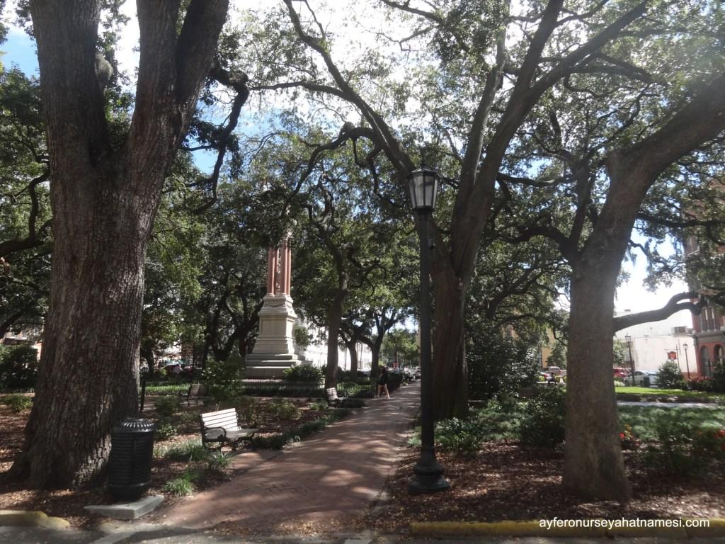 Meydanlardan biri - Savannah