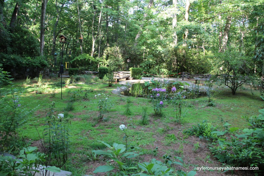 Cherokee Botanical Garden and Nature Trail