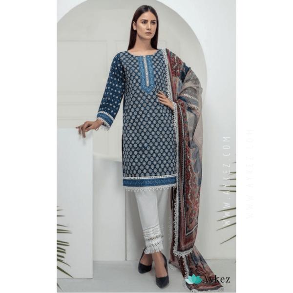 Beautiful Lucknowi Chikankari Suit