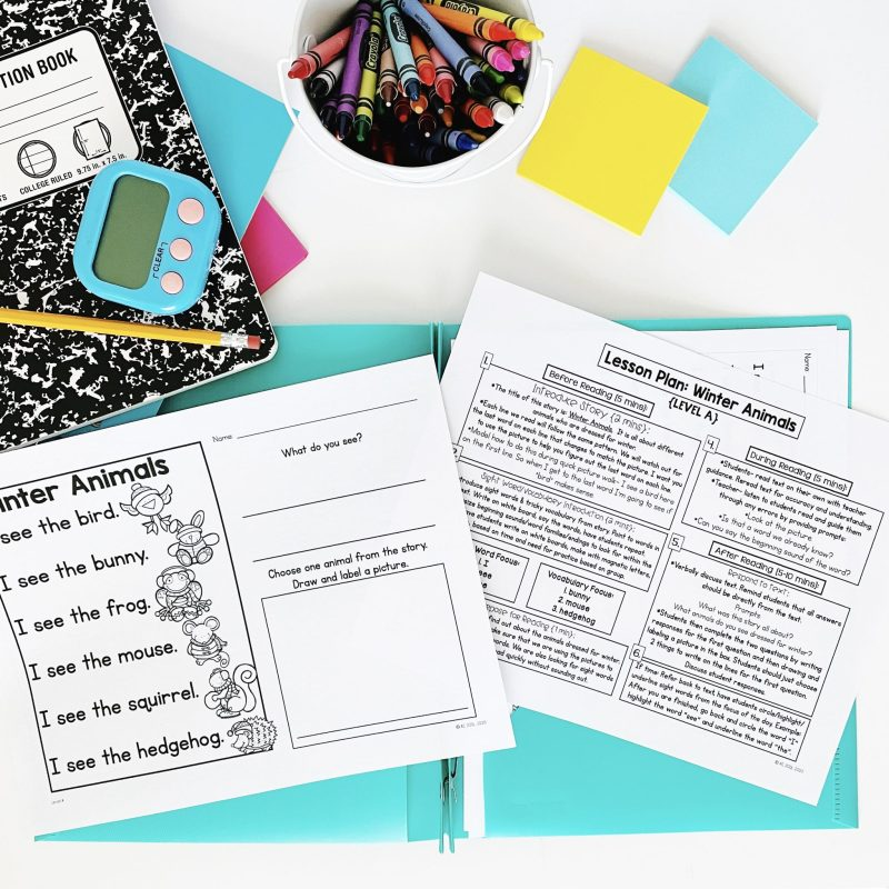 Guided Reading Lesson and Text