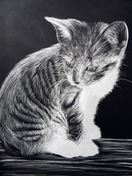 AYLUS_Art_Lauren_Adams_Kitten