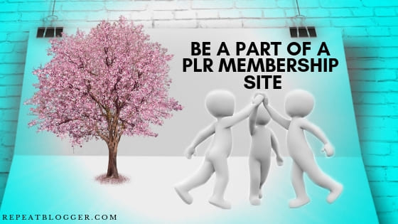 Be a part of a PLR membership site picture in In How To Generate Blog Post Ideas Fast For Beginners Post. (1)