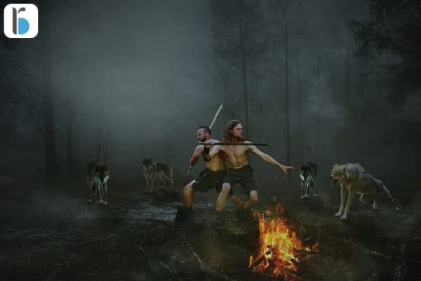 standoff between wolfs and warriors