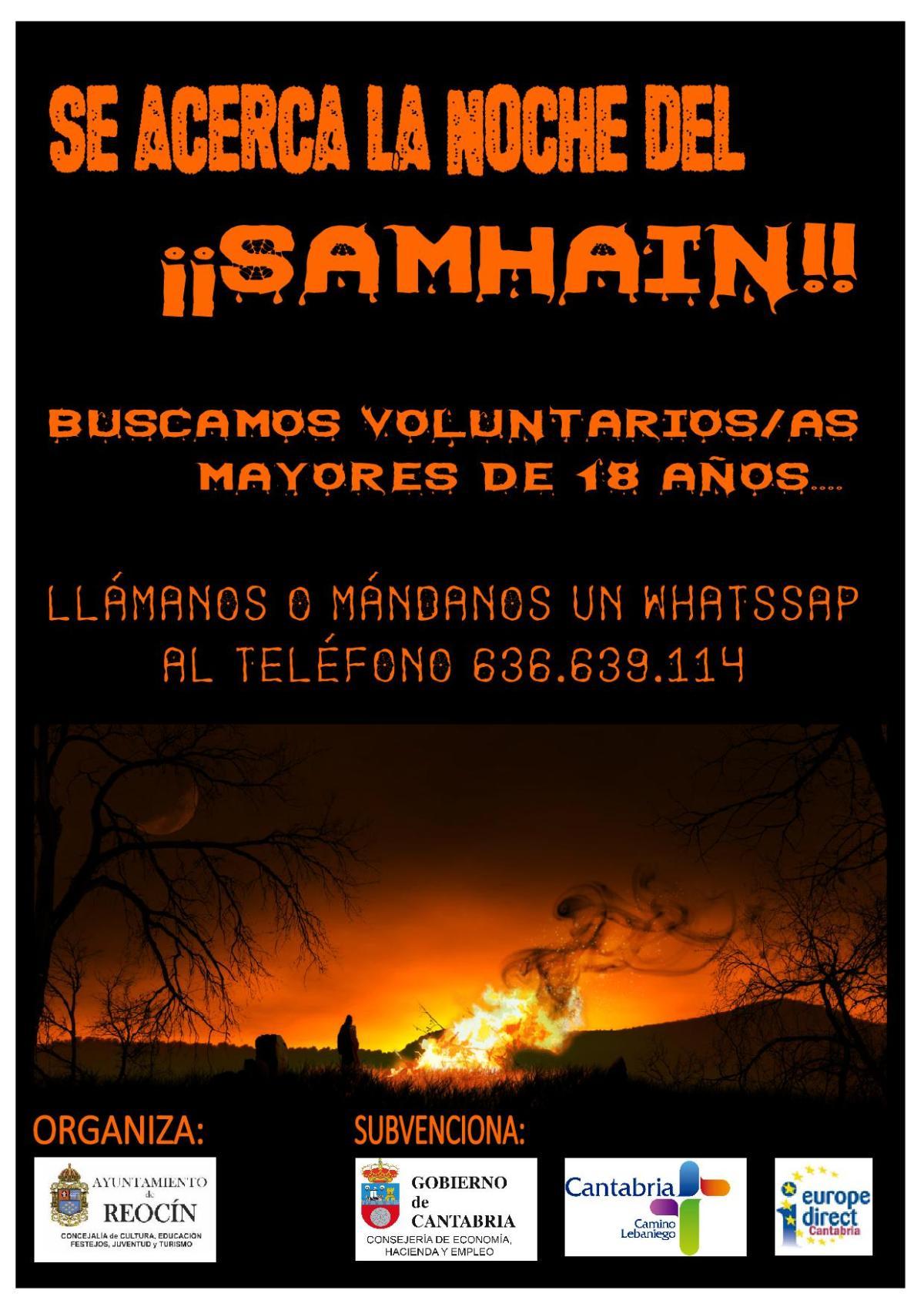 cartel buscamos voluntarios (1)
