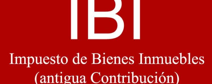 logo-ibi.jpg - 60.85 KB